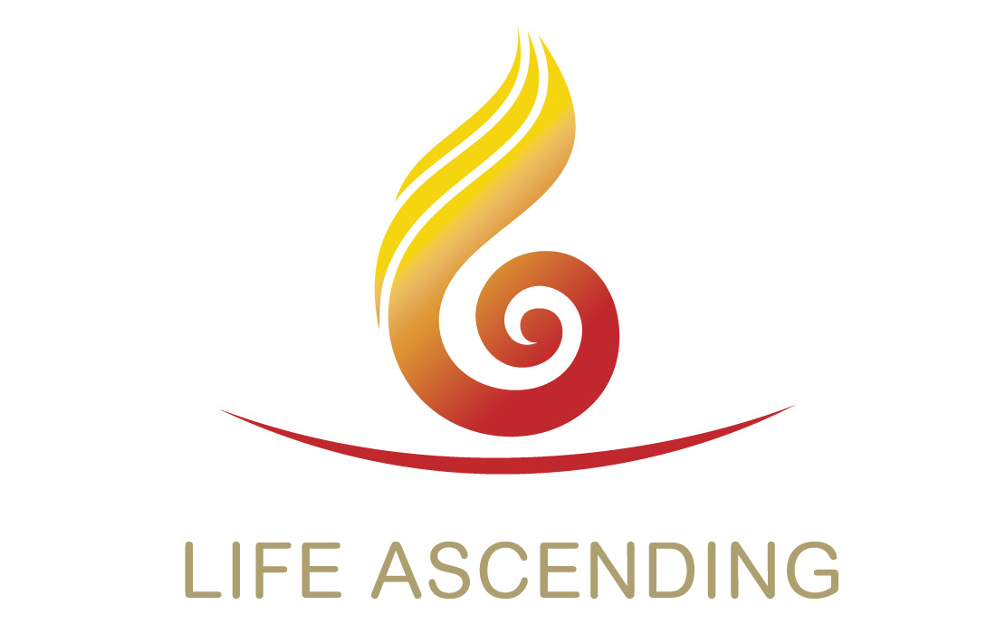 A thought provoking and innovative logo for Life Ascending by Pylon Design